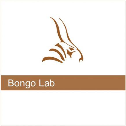 Bongo 2 LAB 3