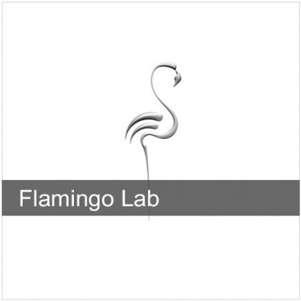 Flamingo nXt LAB 1