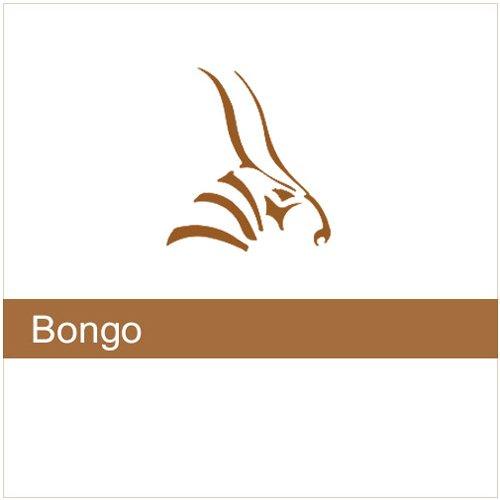 Bongo 2 commercial